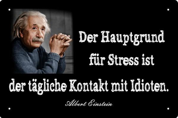 Blechschild Einstein Der Hauptgrund für Stress