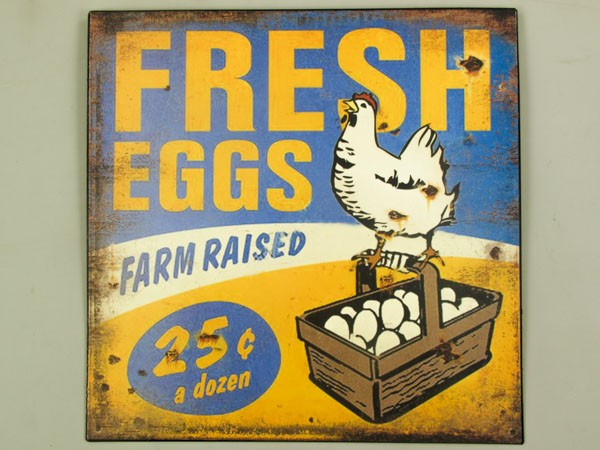 Blechschild Fresh Eggs - C24