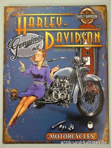 Blechschild Harley Davidson - Motorcycles - 33x25 cm