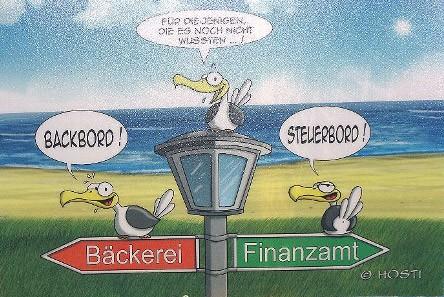 Hösti Platzset Steuerboard / Backboard