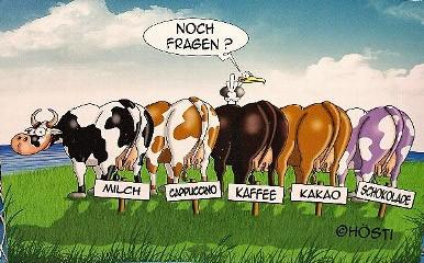 Hösti Tischset 5 Kühe